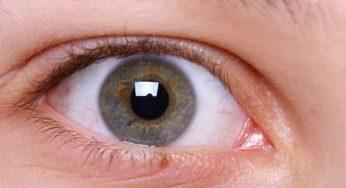 glaucoma torino